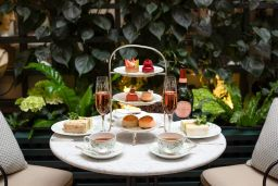 GEMMA BELL AND COMPANY PALM COURT SUMMER ROSE AFTERNOON TEA news image